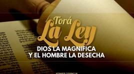 La Ley, Dios la magnifica y el hombre la desecha
