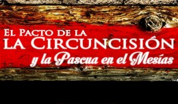 CircuncisiónPacto_750