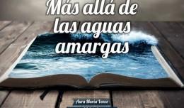 MasAlladelasAguas_750