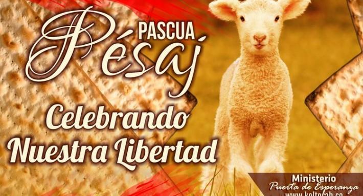 Celebra_Pesaj_Libertad_750