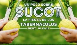 Sucot_Poco_750