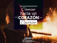 Cam_Cora_Contrito_900x650