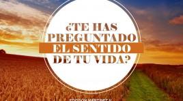 ¿Te Has Preguntado El Sentido De La Vida? – Edisson Martinez V.
