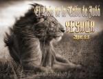 Yeshúa, el León de la Tribu de Yehudá