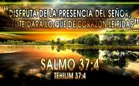 Sal 37:4