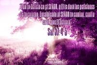 Sal 37:4-5