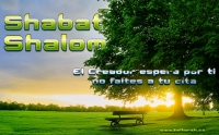 Shabat Shalom - El Creador Espera por ti