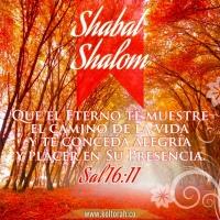 Shabat Sal 16